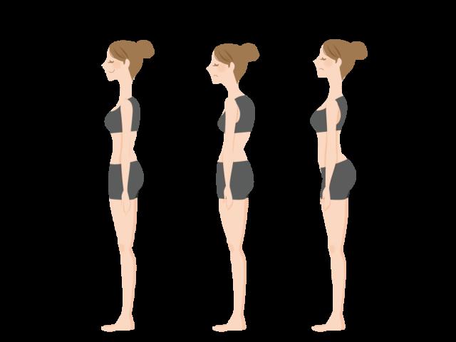 ①正面と側面からの姿勢の写真
